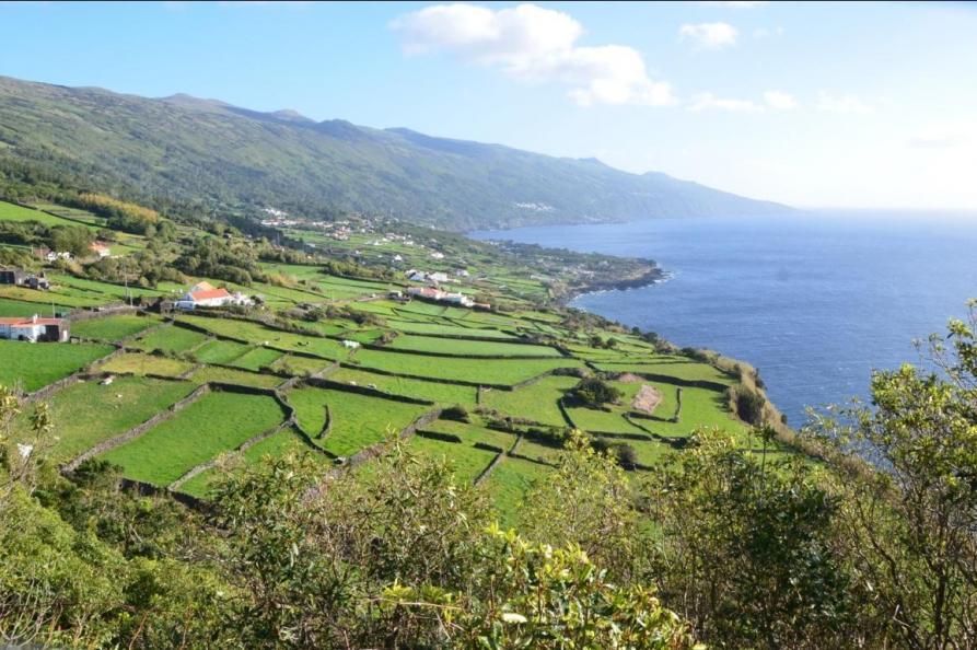 Zuidkust, Pico
